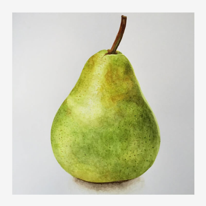 Watercolor Pear Painting