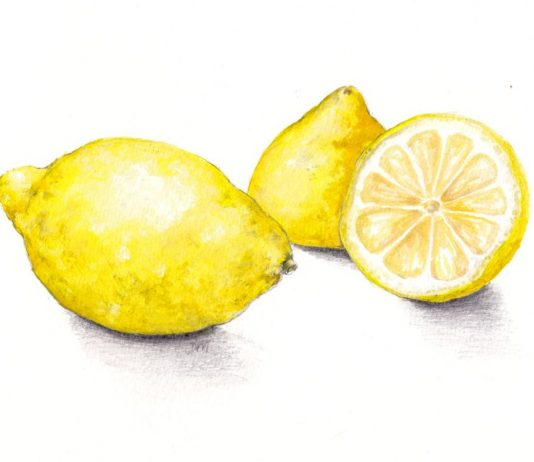 8 Easy Watercolor Lemon Painting Tutorial