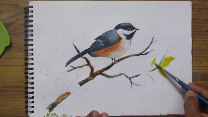 Paint a bird with watercolors