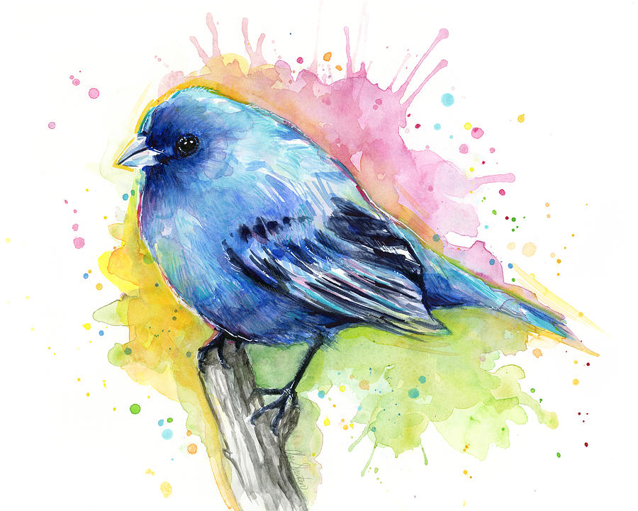 How To Paint a bird with watercolors